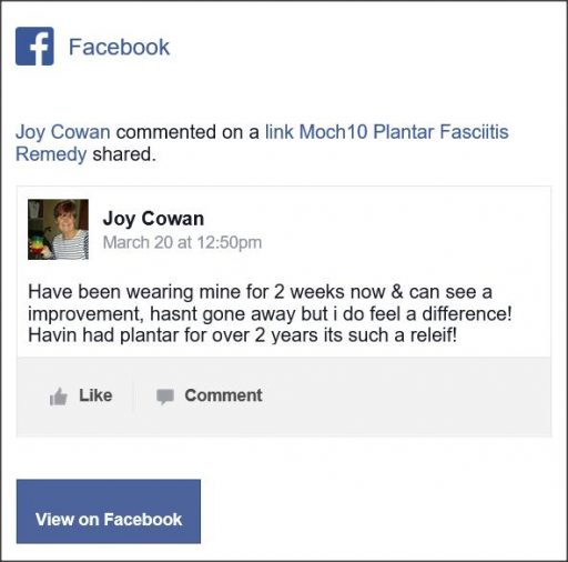 Joy Cowan, Facebook comment