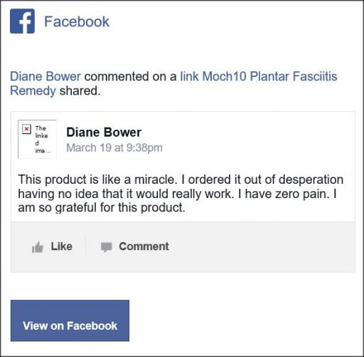 Diane Bower, Facebook comment