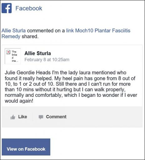 Allie Sturla, Facebook comment