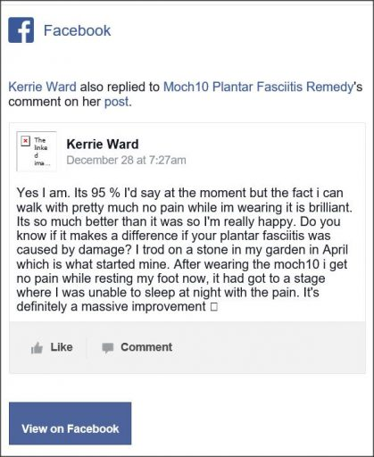 Kerrie Ward, Facebook comment